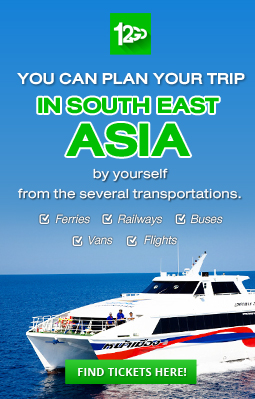 You can plan your trip in south east asia by yourself from the several transportations.